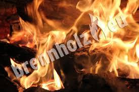 Der Richtige Holzofen Kachel Kaminofen Co Test