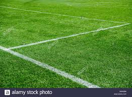 grass soccer field. White Lines On Green Grass Of A Soccer Field. Selective Focus - Stock Image Field S