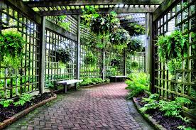 Small Picture trellis garden Trellis Design in Front of the House Indoor and