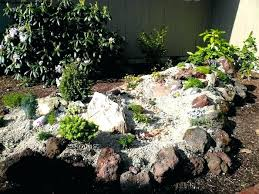 small rock garden ideas design inspiration gardening plants for shady shade pictures of gardens