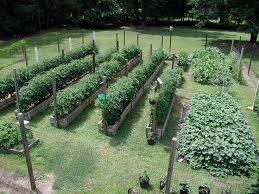 how to lay out a garden. Best 25 Garden Layouts Ideas On Pinterest Vegetable Layout How To Lay Out A