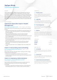 Auditing Resumes Successful Resumes Auditing Enhancv
