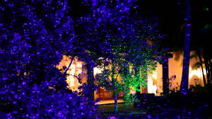 garden landscape laser light