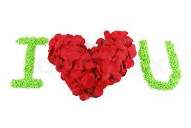 i love u red heart made of rose petals for valentine s day stock photo colourbox