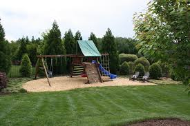 Backyard Play area traditional-landscape
