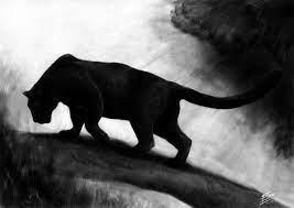 Black Panther Animal 3d Wallpaper