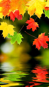 fall iphone backgrounds wallpaper wiki fall iphone images free pic wpd007007 wpmefc