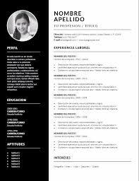 Cv Vitae Cv Curriculum Vitae Diseño Profesional Para Word 69 00 En