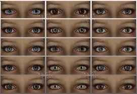 Hazel Eye Chart Hazel Eyes Meaning Learn Chinese Face Reading Auntyflo Com