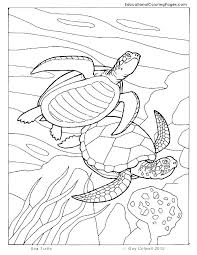 Free Printable Ocean Coloring Pages For Kids Ocean Coloring Pages