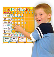 Doowell Activity Charts Magnetic Large Family Star Chart