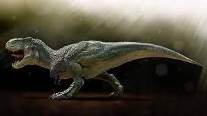 Tyrannosaurus Rex HD Wallpaper ...