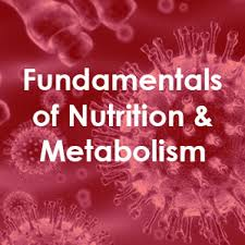 Image result for nutrition 2019