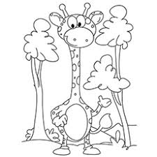 Top 20 Free Printable Giraffe Coloring Pages Online
