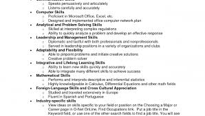Technical Skills On A Resumes Resume Technical Skills List Examples Magdalene Project Org