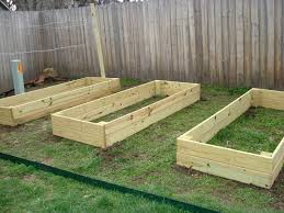 wood for raised vegetable garden new wood for raised ve ableden pressure treated best bed ve able