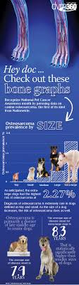 Canine Osteosarcoma New Data On Canine Osteosarcoma