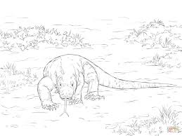 Free printable dragon coloring pages for kids. Komodo Dragon Coloring Sheets