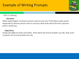 Expository and Persuasive Essay Overview of Requirements   ppt