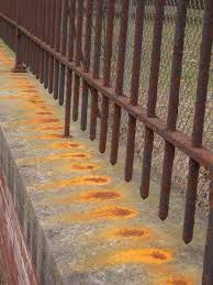 corrugated metal fence panels. Rusted Corrugated Metal Fence. Fence F Panels D