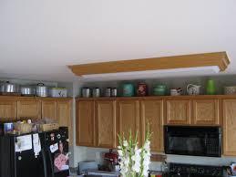 Lighting Decorating Above Kitchen Cabinets Hoffmans Santacruz Living