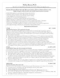Sample Resume: Hr Talent Management Resume Sle