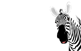 zebra animal template backgrounds wallpapers powerpoint feedback template,feedback free download card designs on marketing template powerpoint