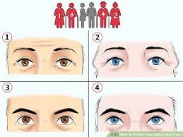 Baby Eye Color Possibility Chart How To Predict Your Babys Eye Color 12 Steps With Pictures