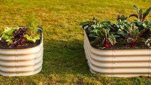 best materials for raised beds