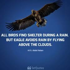 All Birds Find Shelter During A Rain But Eagle Avoids Rain By