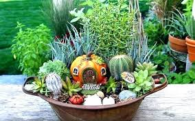 garden plants home depot fairy how to fall