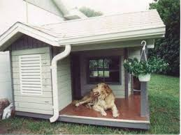 House Plan Insulated Dog Plans Beauty Home Design