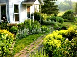 Small Picture Backyard Landscape Ideas On A Budget For Landscaping Front Yard