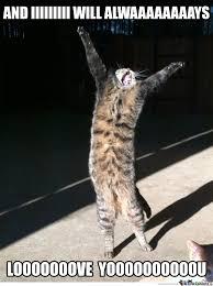 A Crazy Cat by illuxone - Meme Center via Relatably.com