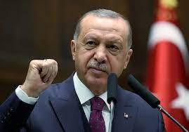"""أردوغان يلوّح بتوسيع المنطقة الآمنة في سوريا """"إذا استدعى الأمر ذلك"""""""