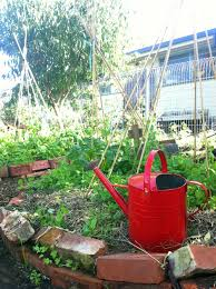 The Stephanie Alexander Kitchen Garden National Program Kitchen Garden East Bentleigh Primary School