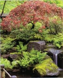 Small Picture 600 best garden ideas images on Pinterest Japanese gardens