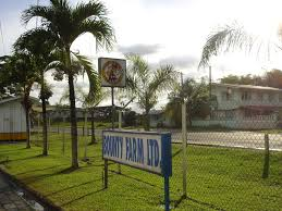 Image result for Bounty Farm Guyana photo