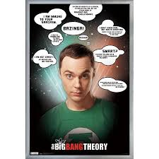Big Bang Theory Quotes Extraordinary The Big Bang Theory Quotes Walmart