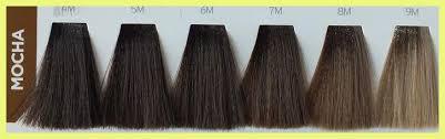 7m Hair Color 195798 Matrix Wonder Brown Wb 7m Hair Color
