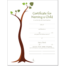 Baby Naming Certificate Templates