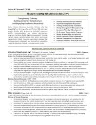 Examples Of Executive Resumes