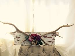 Authentic Deer Antler- Mounted Deer Antlers- Deer Antler Decor- Antlers  with Flowers by