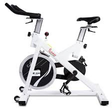 sunny health fitness sf b1110 indoor cycling exercise bike with 44 lb flywheel walmart