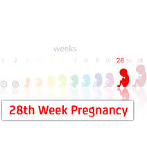 35 Weeks Pregnancy Diet Chart 28 Weeks Pregnant Symptoms Baby Development Tips And