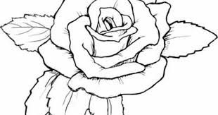 Small Picture Coloring Pages Of Roses And Hearts Beautiful Heart Page For Kids