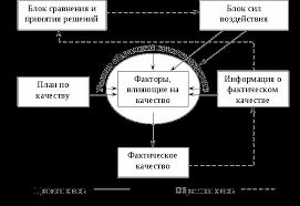 Управления качеством продукции на предприятии Курсовая работа Она представляется состоящей из шести блоков К числу факторов влияющих на качество прямоугольник в центральной части схемы относятся