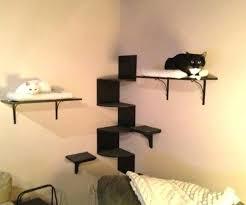 wall mounted cat furniture cat wall furniture favorite furniture ideas as wells walls wall mounted cat wall mounted cat