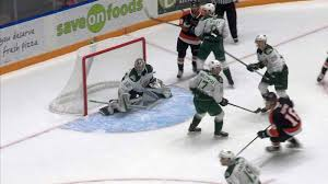 Wolf howls in 41-save shutout, Tigers win streak snapped by Silvertips |  CHAT News Today