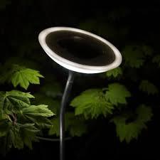 Small Picture solar garden lights modern Roselawnlutheran